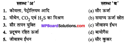 MP Board Class 10th Science Solutions Chapter 14 उर्जा के स्रोत 2