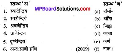 MP Board Class 10th Science Solutions Chapter 7 नियंत्रण एवं समन्वय 3