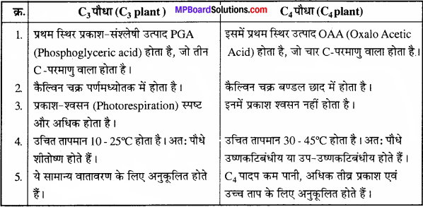 MP Board Class 11th Biology Solutions Chapter 13 उच्च पादपों में प्रकाश-संश्लेषण - 5