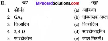 MP Board Class 11th Biology Solutions Chapter 15 पादप वृद्धि एवं परिवर्धन - 2