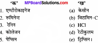 MP Board Class 11th Biology Solutions Chapter 16 पाचन एवं अवशोषण - 1