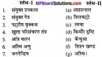 MP Board Class 11th Biology Solutions Chapter 7 प्राणियों में संरचनात्मक संगठन - 10