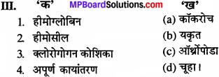 MP Board Class 11th Biology Solutions Chapter 7 प्राणियों में संरचनात्मक संगठन - 14
