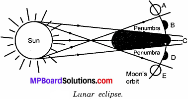 MP Board Class 6th Science Solutions Chapter 11 Light, Shadows and Reflections 8