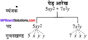 MP Board Class 7th Maths Solutions Chapter 12 बीजीय व्यंजक Ex 12.1 image 4