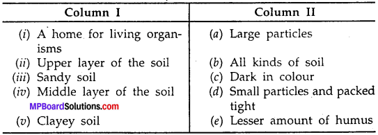 MP Board Class 7th Science Solutions Chapter 9 Soil img-5