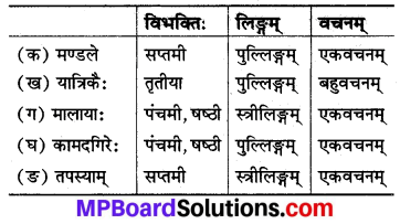 MP Board Class 8th Sanskrit Solutions Chapter 12 चित्रकूटम् 3