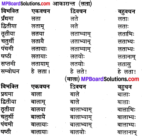 MP Board Class 9th Sanskrit व्याकरण शब्द रूप img-11