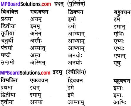 MP Board Class 9th Sanskrit व्याकरण शब्द रूप img-30