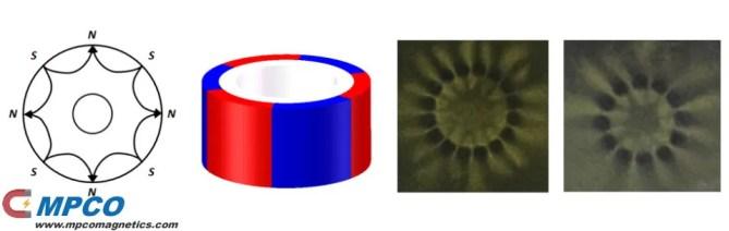 Multi-polar magnetized in outer diameter