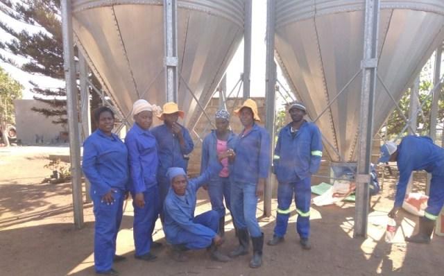 Nkomazi local municipality's Steenbok based female farmer Sinethemba Sambo, is proud owner of Siyavuya farm which has become a lucrative project in Mpumalanga province. Photo by Anna Ntabane, Mpumalanga Guardian / CAJ News