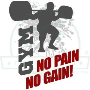 Gym No Pain Gain
