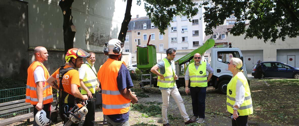 «Prox'QuartiersBriand»: mobilisation pour la qualité de vie des habitants | M+ Mulhouse