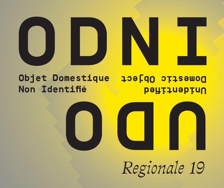 ODNI/UDO (Objet Domestique Non Identifié / Unidentified Domestic Object) - Régionale 19