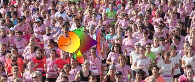 Course-marche Les Mulhousiennes: de 8000 à 80000 participantespour le cru 2019 !