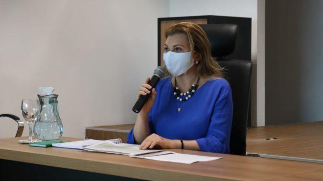 WhatsApp Image 2021 02 10 at 16.23.29 1 Rede de Controle da Gestão Pública do Piauí realiza primeira reunião de 2021 e traça as diretrizes para atuação