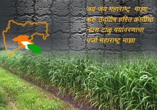 महाराष्ट्र कृषी दिन