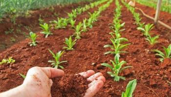 मृदा व कृषी महाराष्ट्र