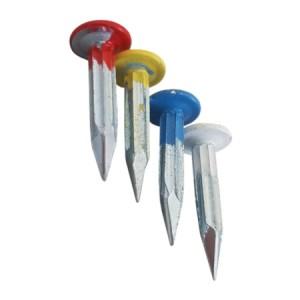 Survey Nails