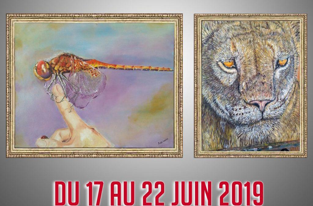 Exposition peinture / dessin «Le règne animal»