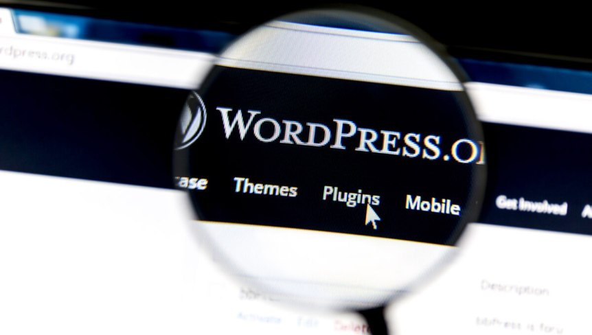 Wordpress Auto Update