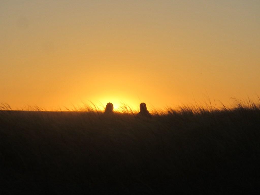 Sunset in the Gobi desert