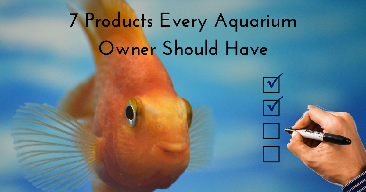 7 Products Every New Aquarium Owner Should Have