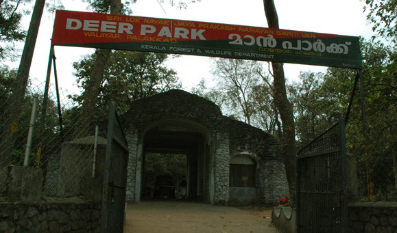 JP Smirthivanam and deer park palakkad