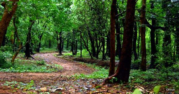Tourist places in Palakkad
