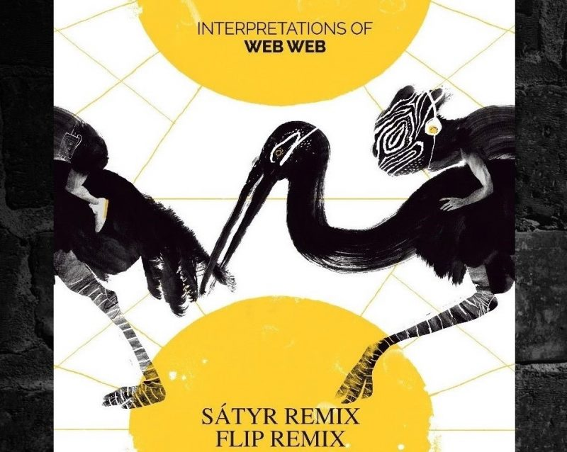 "Flip & Sátyr – ""Interpretations"" Of Web Web Remixes"