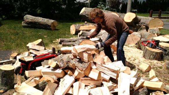 Lumberjack_School