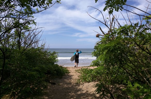 playa_grande_costa_rica_trail