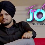 Teri Meri Jodi Movie Cast Story Review Hit Or Flop
