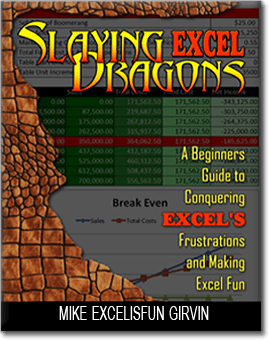 Slaying Excel Dragons book cover