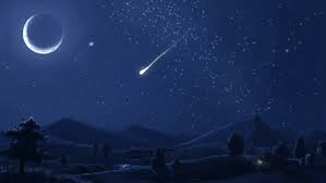 stelle cadenti - Tutti pronti per la pioggia di stelle cadenti.