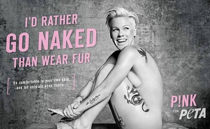 beppe grillo 153 - Pink posa nuda in difesa dei diritti degli animali