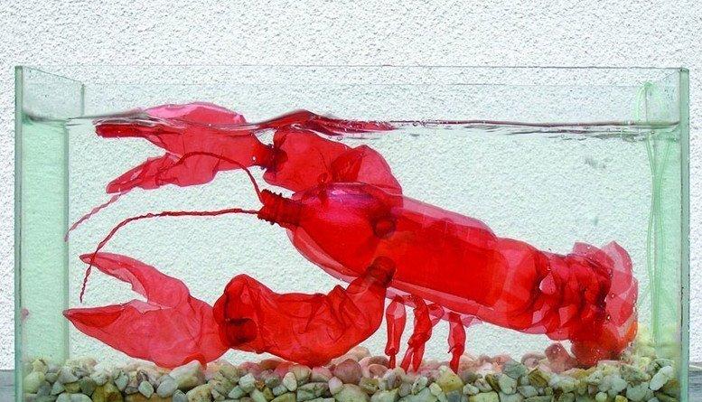 plastic bottle sculpture recycle art veronika richterova 4 - Sculture realizzate solamente con delle bottiglie di acqua