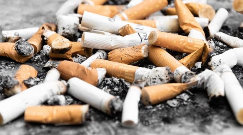 MOzziconidi Sigaretta 1 - Progetto Mozzicone