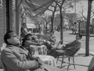 Vitelloni al bar 320x242 - Fellini