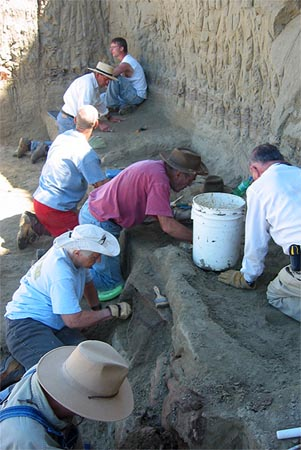 Turtle Graveyard -- Marmarth Research Foundation
