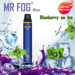MR FOG MAX Blueberry on ice