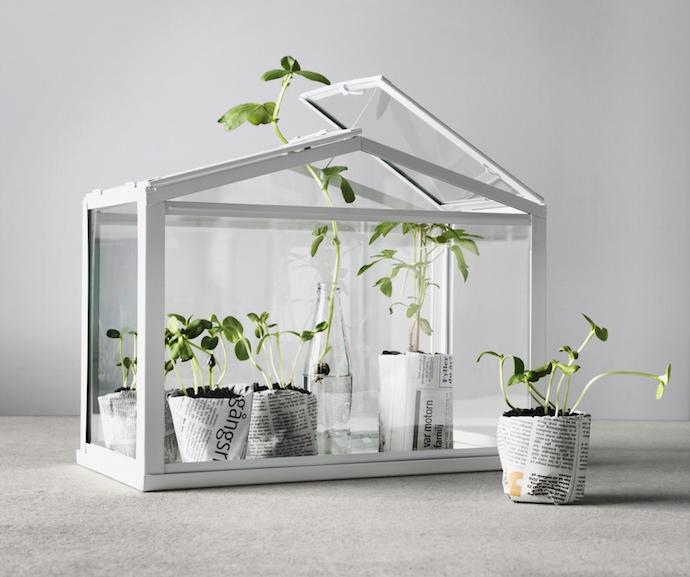 MrFox_Ikea_Socker_Greenhouse