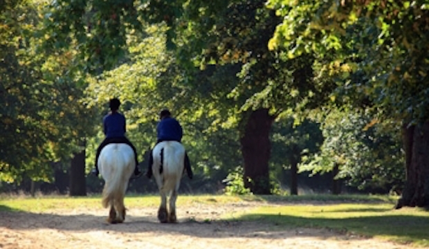 Hyde Park Horseriding for Kids