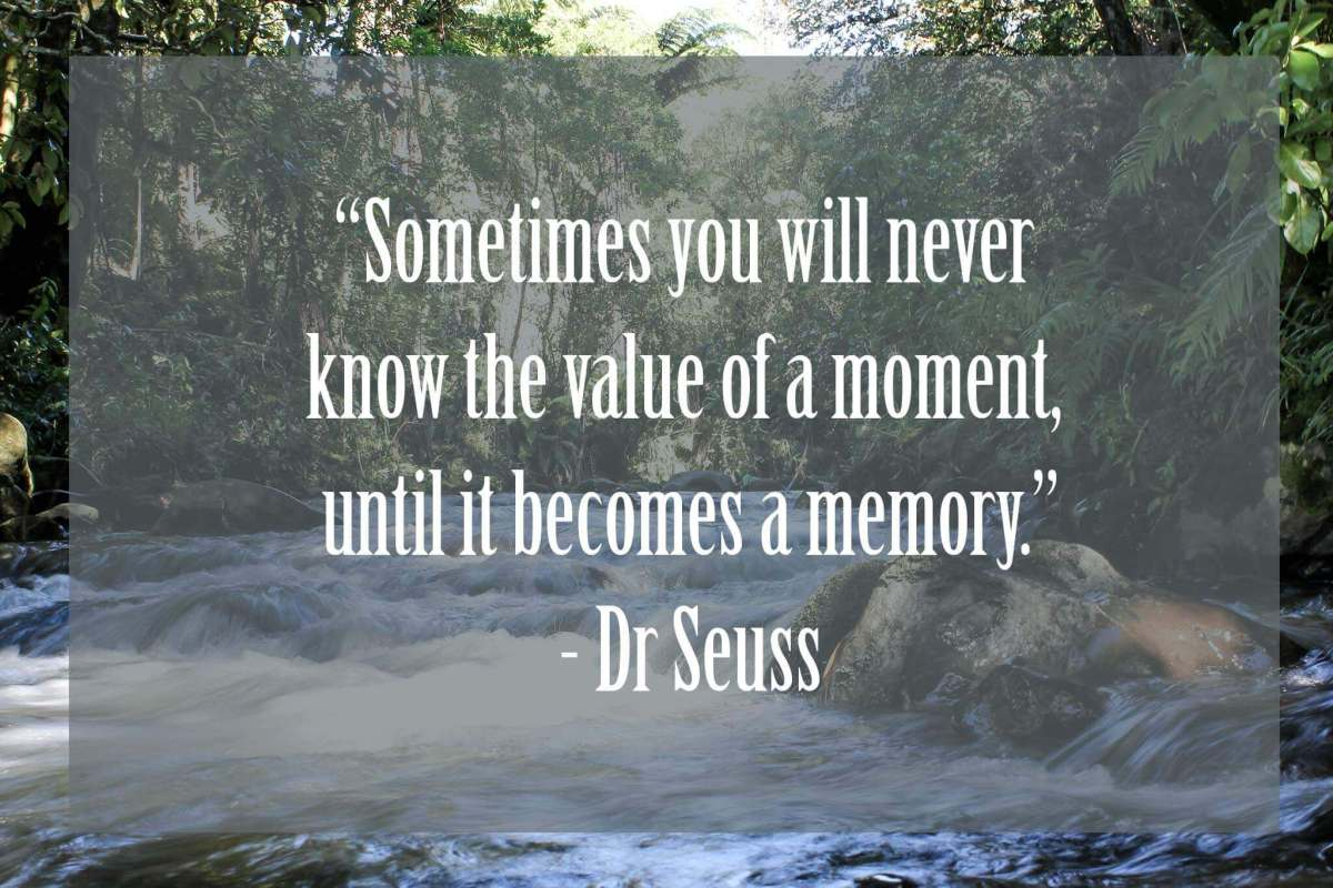 Sometimes-you-will-never-know-the-value-of-a-moment-until-it-becomes-a-memory | Dr Seuss Quotes Which Will Inspire You