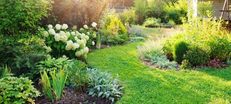 How a Nice Garden Can Impress Buyers
