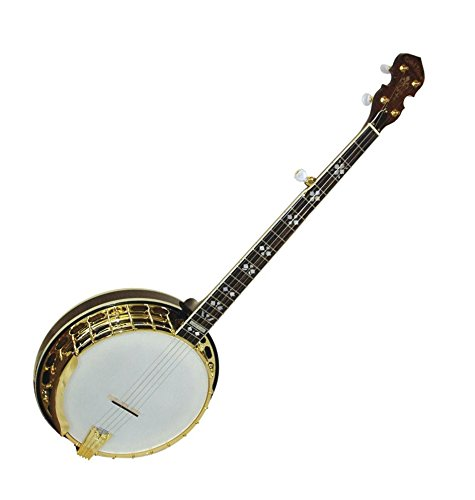 OB-250 Classic Orange Blossom 5-string Banjo by Gold Tone