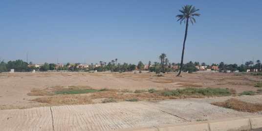 terrain titré à la palmeraie marrakech
