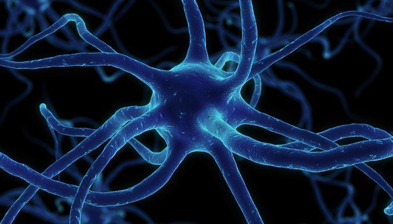 Kitap Okuyunca Beynimizde Ne Oluyor?