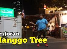 manggo_tree_bangkok_01