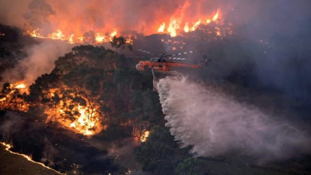 Kebakaran-Hutan-Australia-Selamat-Tak-Melancong-Ke-Sana-04